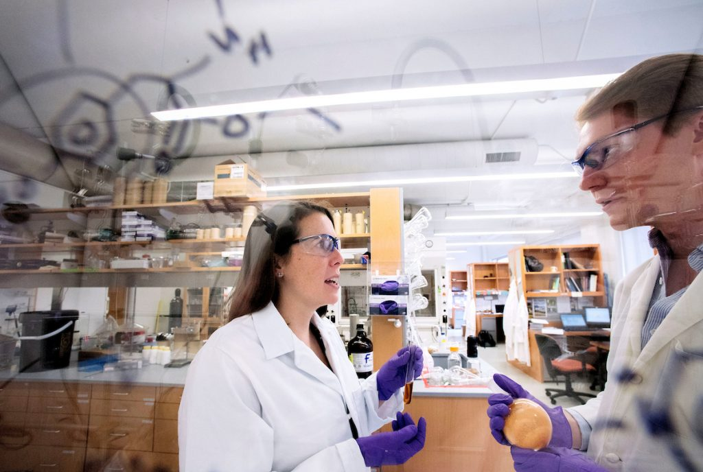 Jillian Dempsey, Assistant Professor of Chemistry talks with colleague in science lab